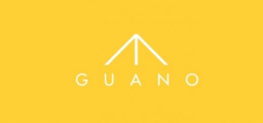 GUANO CCESD